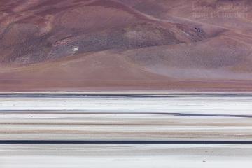atacama-chile-_M4_9602