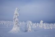 _m4_8853-finlandia-kuusamo