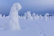 _m4_8878-finlandia-kuusamo