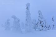 _m4_9421-finlandia-kuusamo