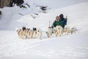 _M4_1123-psy-husky-zaprzeg-Grenlandia