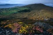 irlandia-rel-2006-32