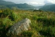 irlandia-rel-2006-65