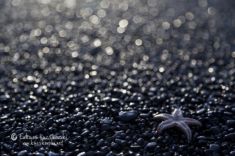 25C1110829-Islandia-alien-Memorial-Maria-Luisa