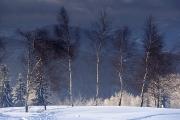 zimowo-2008-04