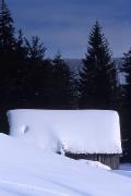 zimowo-2008-09