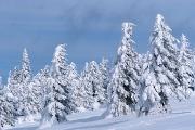 zimowo-2008-13