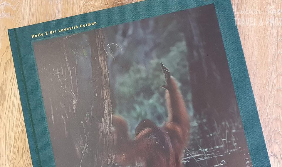 Wild-album