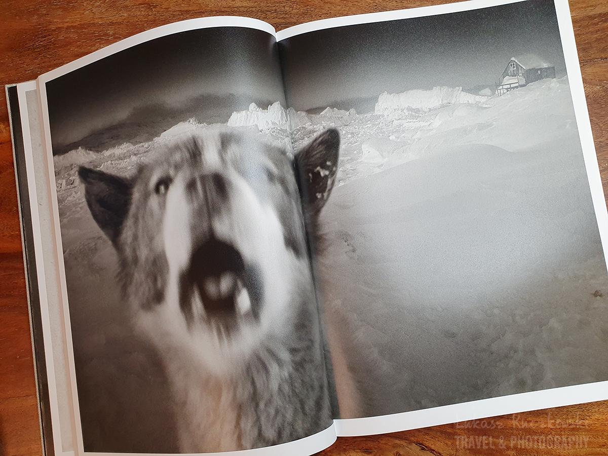 psy-arctic-heroes-Grenlandia